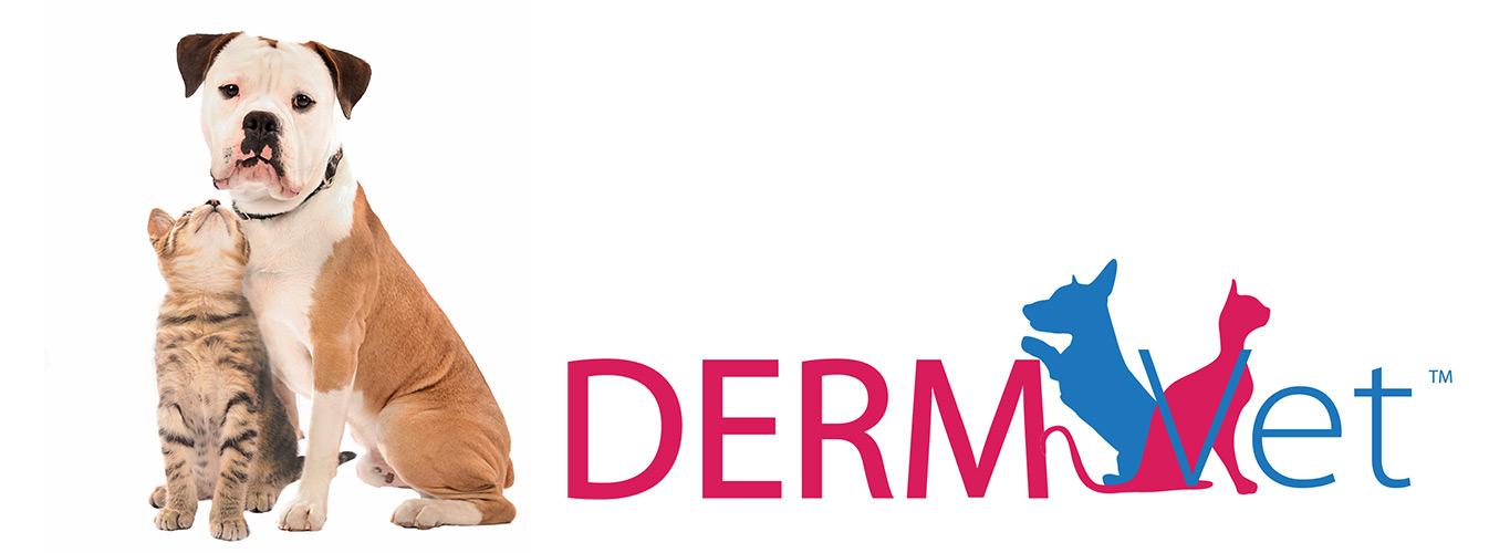 Cat and dog with DermVet logo